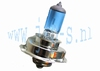 XENON LOOK LAMP P26 ( type 1 )
